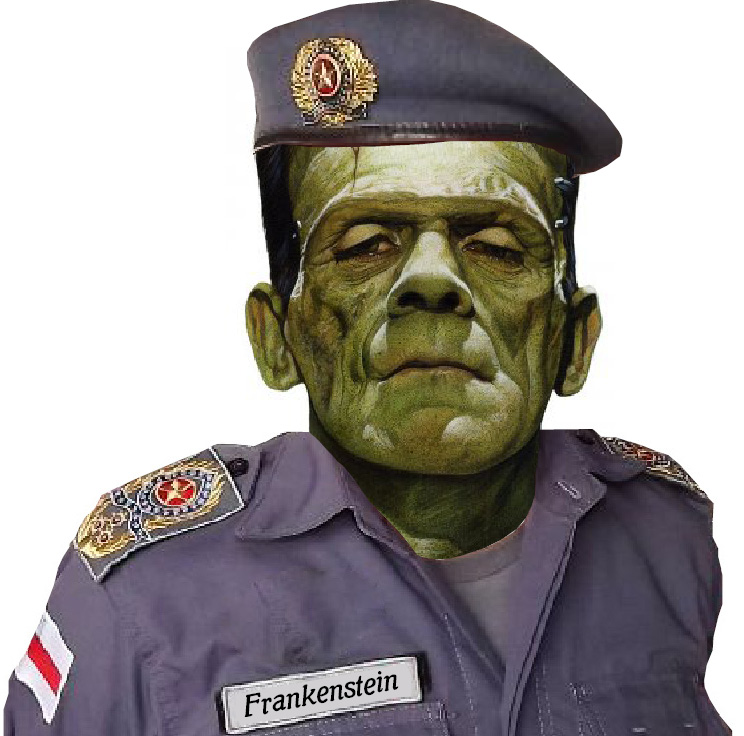 frankenstein PM